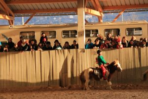 ecole-equitation-animations-challenge-2