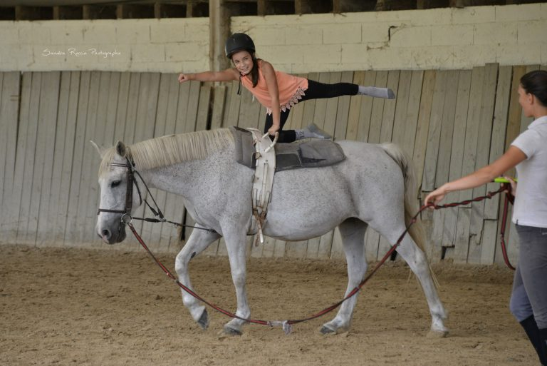 ecole-equitation-animations-jours-feries-1