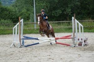 Ecole d'équitation Galop 1-3