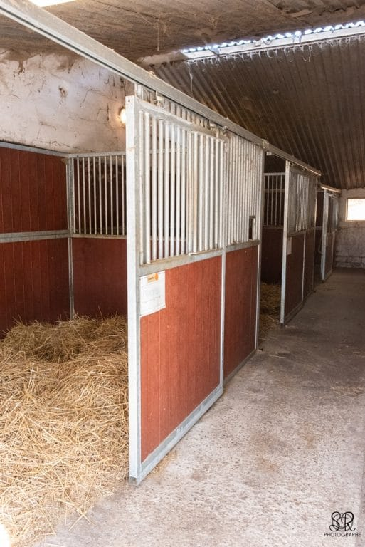 ecuries-exterieurs-centre-equestre-montfort-crolles